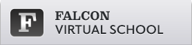 Falcon Virtual School